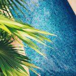 Tropische sfeer creëren op kantoor? Plaats enige kunstpalmen